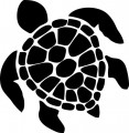 Sea Turtle Vinyl Sticker 5