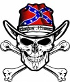 Skull WITH Confederate Flag HAT