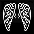 Angle Wings Decal 1