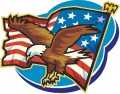 Eagle with Flag Decal Sticker
