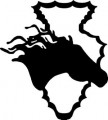 Horse & Arrow Wall Decal