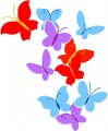 Color Butterfly Wall Graphic
