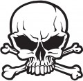 Skull Wall Decal Sticker 02