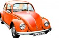 Beetle Wall Graphic