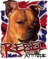 pitbull rebel attitude sticker