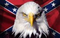 southern pride eagle anf battle flag stickerl