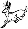 Deer Running Outline Wall Decal