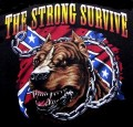 pitbull strong survive rebel sticker