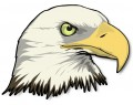 Bald Eagle Head Wall Sticker