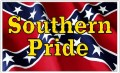 Southern Pride Rebel Battle Flag Sticker