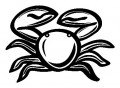 Crab Sticker Sticker