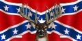 rebel battle flag and deer head sticker