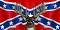 buck on rebel flag sticker