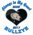 Photo Heart Circle Memory Decals (My Best Little Boy I Miss You So Much)
