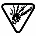 Hip Mohawk Skull in Triangle Decal