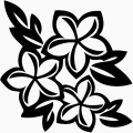 Plumeria Flower Wall Decals