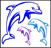 dolphin-wall-graphic-kit.jpg