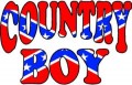 COUNTRY BOY REBEL FLAG FILL STICKER 2
