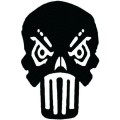 Punnisher Skull Wall Decal
