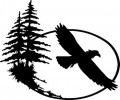 Eagle Flying Wall Decal