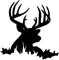 Deer Head Decal 55