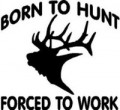 Born to Hunt 22 Decal